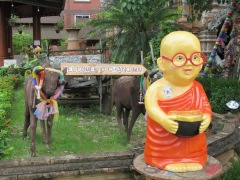 Welcome-To-Chiang-Mai
